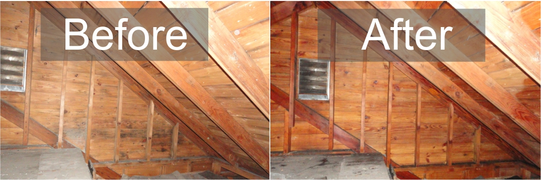 Attic Mold & ABS Mold - Attic